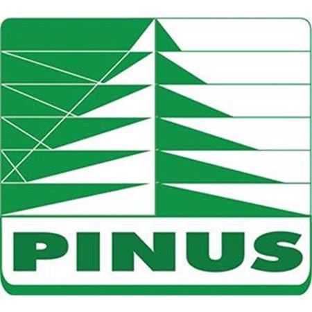 Picture for vendor PINUS