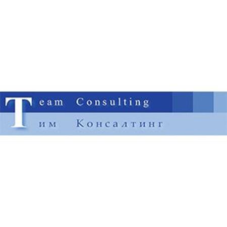 Picture for vendor TEAM CONSULTING